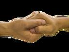 main, doigt, ensemble